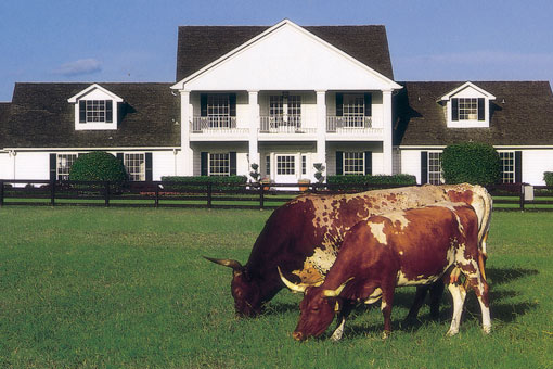 "No visit to Dallas is complete without touring the stunning Southfork Ranch from the legendary TV series ""Dallas""."